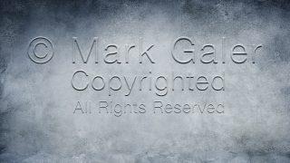 © Mark Galer