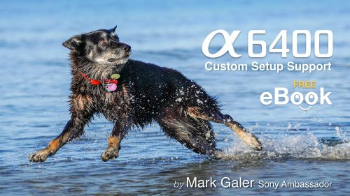 Sony A6400 Free eBook
