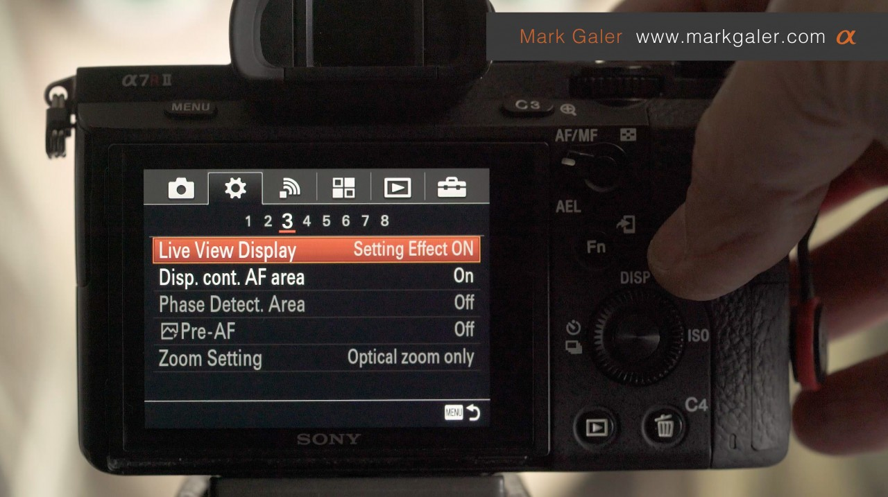 Live View Display - Setting Effect ON or OFF? - Mark Galer