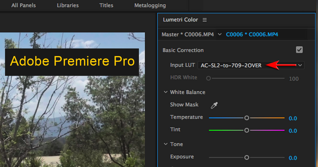 Capture and Post: Using Picture Profiles on Sony Alpha