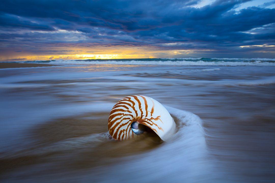 Fraser Island Photo Tour