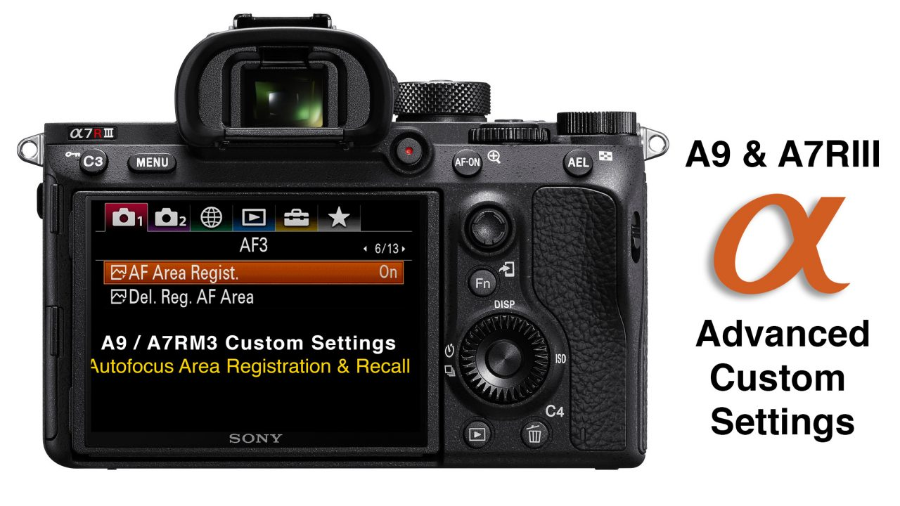 A7RIII and A9 Custom Settings