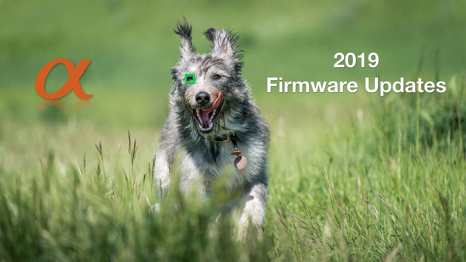 Sony Alpha 2019 Firmware Updates - Mark Galer